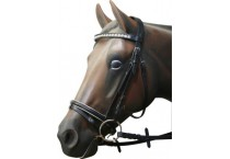Bridles, Halters and Reins