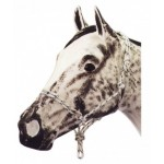 Knotted Rope Halter (foal) No Nose Knot